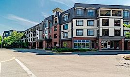 419-8880 202 Street, Langley, BC, V1M 4E7