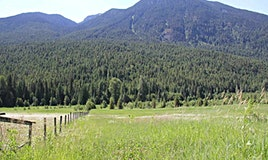 2672 Blackwater Road, Pemberton, BC, V0N 2H1