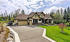 12020 264th Street, Maple Ridge, BC, V2W 1P1