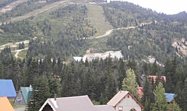 4-20649 Edelweiss Drive, Agassiz, BC, V0M 1A1