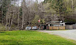 49-1650 Columbia Valley Road, Columbia Valley, BC, V2R 4X4