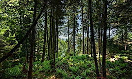 350 Mountain Drive, West Vancouver, BC, V0N 2E0