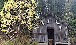 6111 Tyaughton Lake Road, Pemberton, BC, V0K 1P0