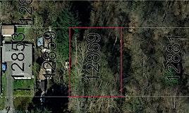 12869 113b Avenue, Surrey, BC, V3W 0Z1