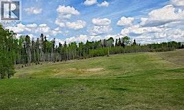 40 Assiniboine Drive, Swan Hills, AB, T0G 2C0