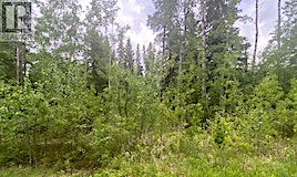 lot none-118 Wolf Trail Trail, Rural Opportunity M.D., AB, T0G 0K0