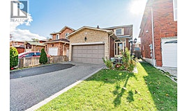 105 Dumfries, Brampton, ON, L6Z 2W6