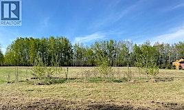 11013 Township Road 423, Rural Ponoka County, AB, T0C 2J0