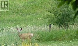 420069 Range Road 284, Rural Ponoka County, AB, T4J 1R3