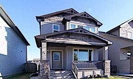 59 Skyview Springs Gardens Northeast, Calgary, AB, T3N 0B6