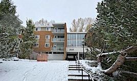 355,-1620 8 Avenue Northwest, Calgary, AB, T2N 1C4
