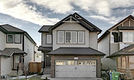 43 Skyview Shores Link Northeast, Calgary, AB, T3N 0H4