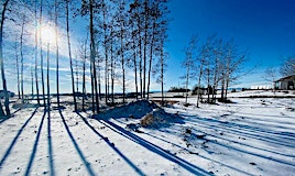 101 Willow Creek Heights Heights, Rural Rocky View County, AB, T3R 0K3