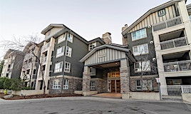 248,-35 Richard Court Southwest, Calgary, AB, T3E 7N9