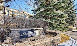 206,-260 Shawville Way Southeast, Calgary, AB, T2Y 3Z6