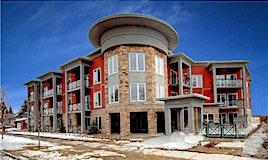 306,-117 19 Avenue Northeast, Calgary, AB, T2E 1N9