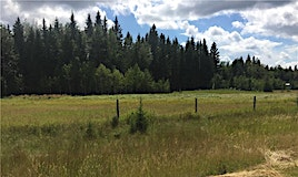 111 Twp Road 325a, Rural Mountain View County, AB, T0M 1X0