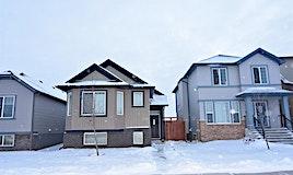 226 Saddlebrook Circle Northeast, Calgary, AB, T3J 4T7
