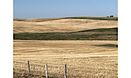 264-On Township Road, Rural Rocky View County, AB, T3P 1A1