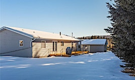 5224 Township Road 292, Rural Mountain View County, AB, T0M 2E0