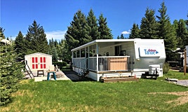21 Timber Road, Rural Mountain View County, AB, T0M 1X0