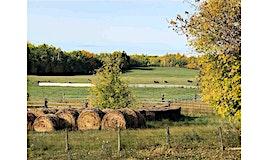 51320 Rr 261, Rural Parkland County, AB, T7Y 1B5