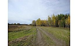 RR220 Twp 622, Rural Thorhild County, AB, T0A 3J0