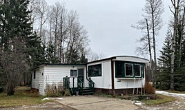 48218 Range Road 90, Rural Brazeau County, AB, T7A 2A1