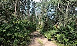 119-54425 Lac Ste. Anne Trail, Rural Lac Ste. Anne County, AB, T0E 0A0