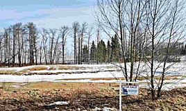28031 Twp Rd 514, Rural Parkland County, AB, T7Z 1X1
