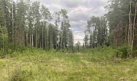 1090 Wolf Trail, Rural Opportunity M.D., AB, T0G 2K0