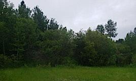 831 Pelican Road, Rural Opportunity M.D., AB, T0G 2K0