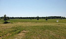 9 Lynn Creek Es, Calgary, AB, T0C 0T0