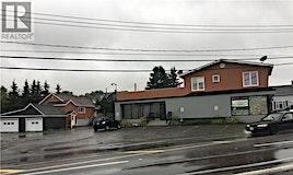 43 Evangeline Street, Grand Falls, NB, E3Y 1B9