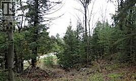 1848 Doe Lake Road, Bracebridge, ON, P1P 1R3