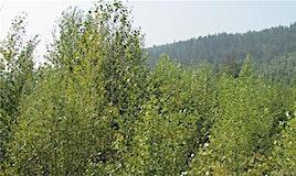 150Acres Sugar Lake Sihlis Road, Cherryville, BC, V1H 2B1