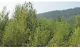 150Acres Sugar Lake Sihlis Road, Vernon, BC, V1H 2B1