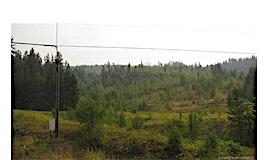 76-6 Acres Highway Richlands Road, Cherryville, BC, V0E 2G1