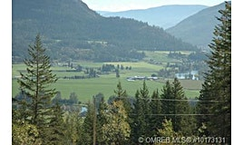 241 Twin Lakes Road, Enderby, BC, V0E 1V3