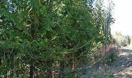 68 Castle Heights, Anglemont, BC, V0E 1M8