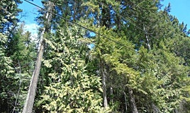 Lots 63/64 Copper Island Drive, Anglemont, BC, V0E 1M8