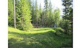 109 Dolly Varden Road, Enderby, BC, V0E 1V5