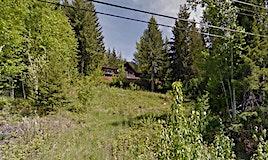 63 Fraser Road, Anglemont, BC, V0E 1M8