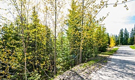 Lot 169 Estate Close, Anglemont, BC, V0E 1A0
