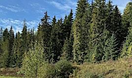 21-1681 Sugar Lake Road, Cherryville, BC, V0E 2G2