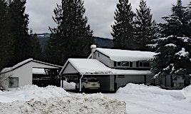 901 Birch Avenue, Sicamous, BC, V0E 2V0