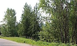 Lot 115 Fraser Road, Anglemont, BC, V0E 1M8