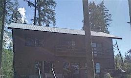 956 Bradley Road, Seymour Arm, BC, V0E 2V2