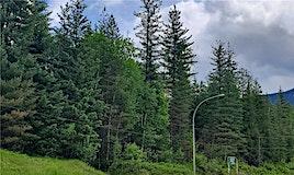 2250 East Trans Canada Highway, Revelstoke, BC, V0E 2S0