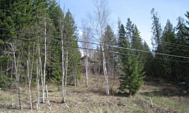 Lot-Lot 63 Fraser Road, Anglemont, BC, V0E 1M8